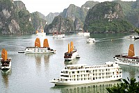 Good Choices of Overnight Cruises in Halong Bay